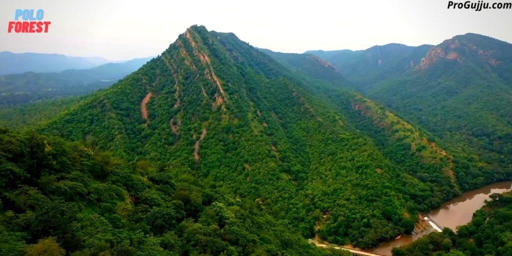 polo forest vijaynagar